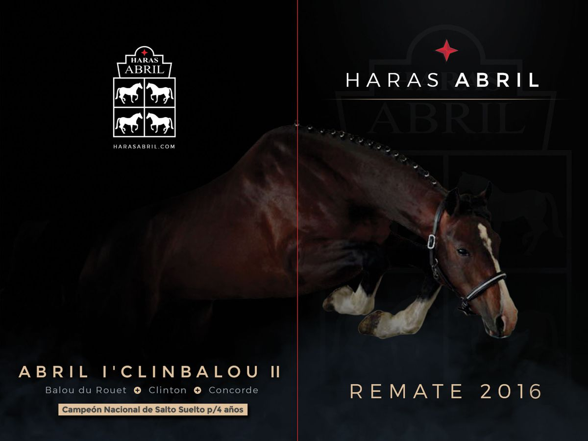 cover-haras-abril-2016